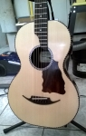 12m guitar p