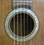14 guitar 1900