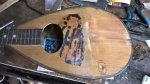 2b mandolin Puglisi