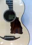 3m 1 guitarp