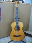 10 guitar panagi