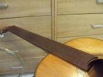8 guitar panagi